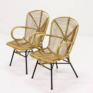 Set of 2 Rattan and Metal Side Chairs, 1950s
